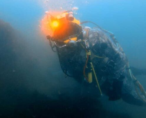 Oliver diving in the Halifax Harbour